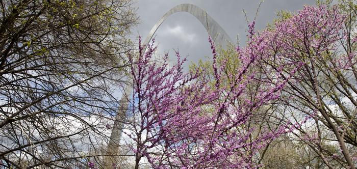 Gateway Arch in spring