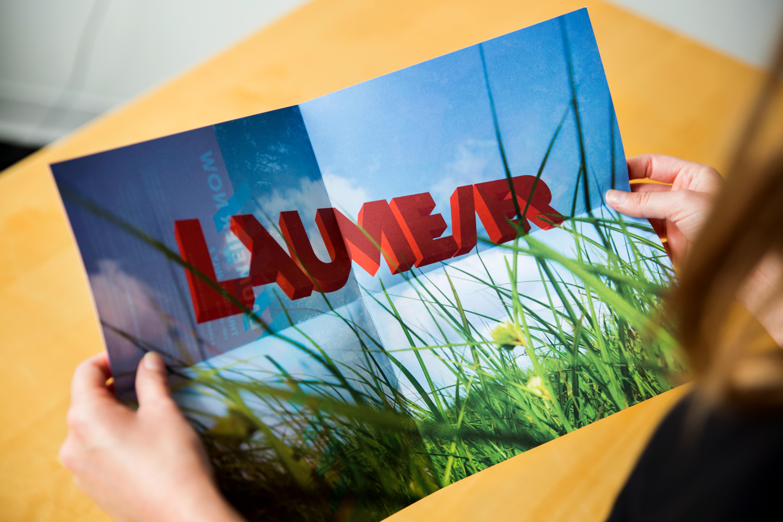 Laumeier_2