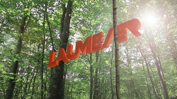 Laumeier logo