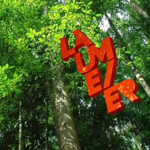 Laumeier environmental logo