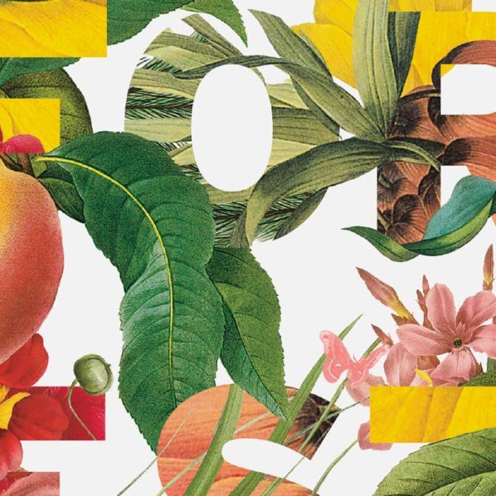 Rainforest Alliance 2015 Gala Invitation