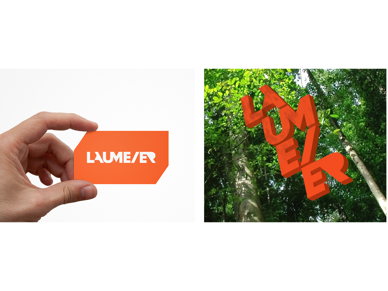 Side-by-side image showing Laumeier Sculpture Park business cards and logo