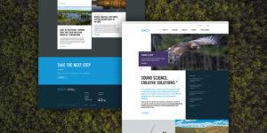 SWCA Website Launch